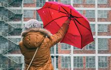Sturmfeste Regenschirme